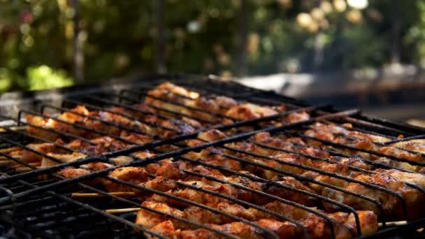 Kuřecí maso na rožni