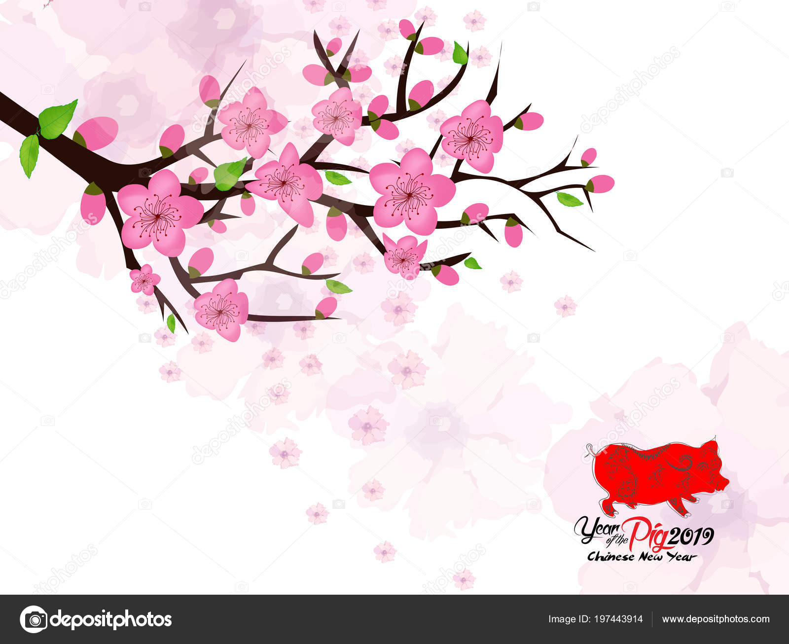 Chinese New Year Card Plum Blossom Lantern 2019 — Stock Vector ...