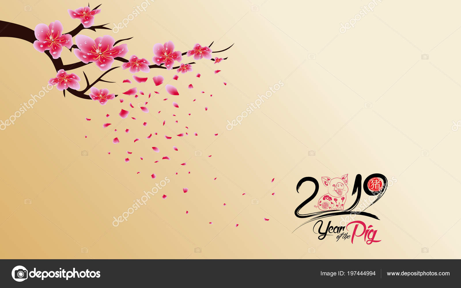 chinese new year 2019 blossom wallpapers year pig hieroglyph pig stock vector