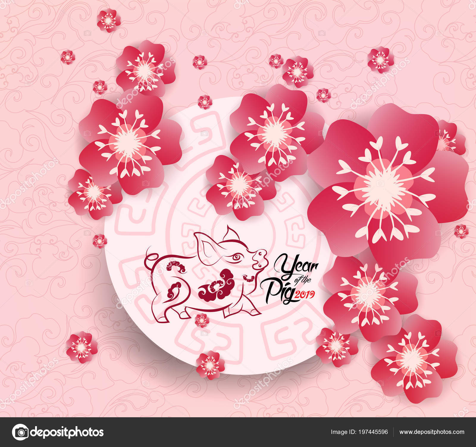 Chinese New Year 2019 Background Blooming Sakura Branches Stock