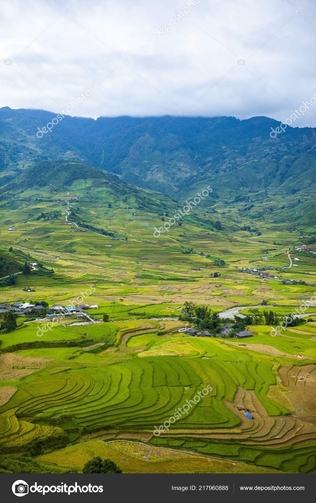 Mucangchai Vietnam Septiembre 2018 Arrozales Terrazas Los