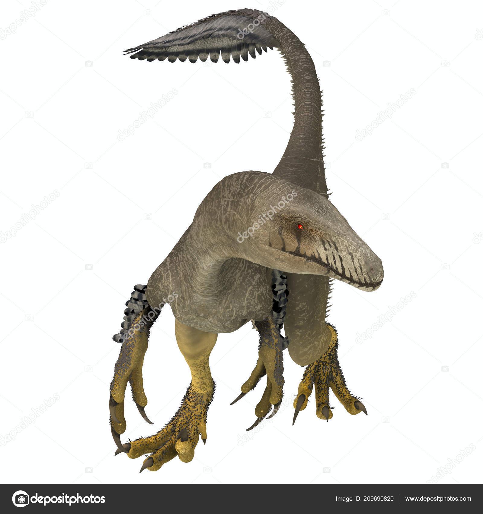 Dromaeosaurid