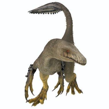 Dakotaraptor was a carnivorous dromaeosaurid theropod dinosaur that lived in South Dakota, North America during the Cretaceous Period.