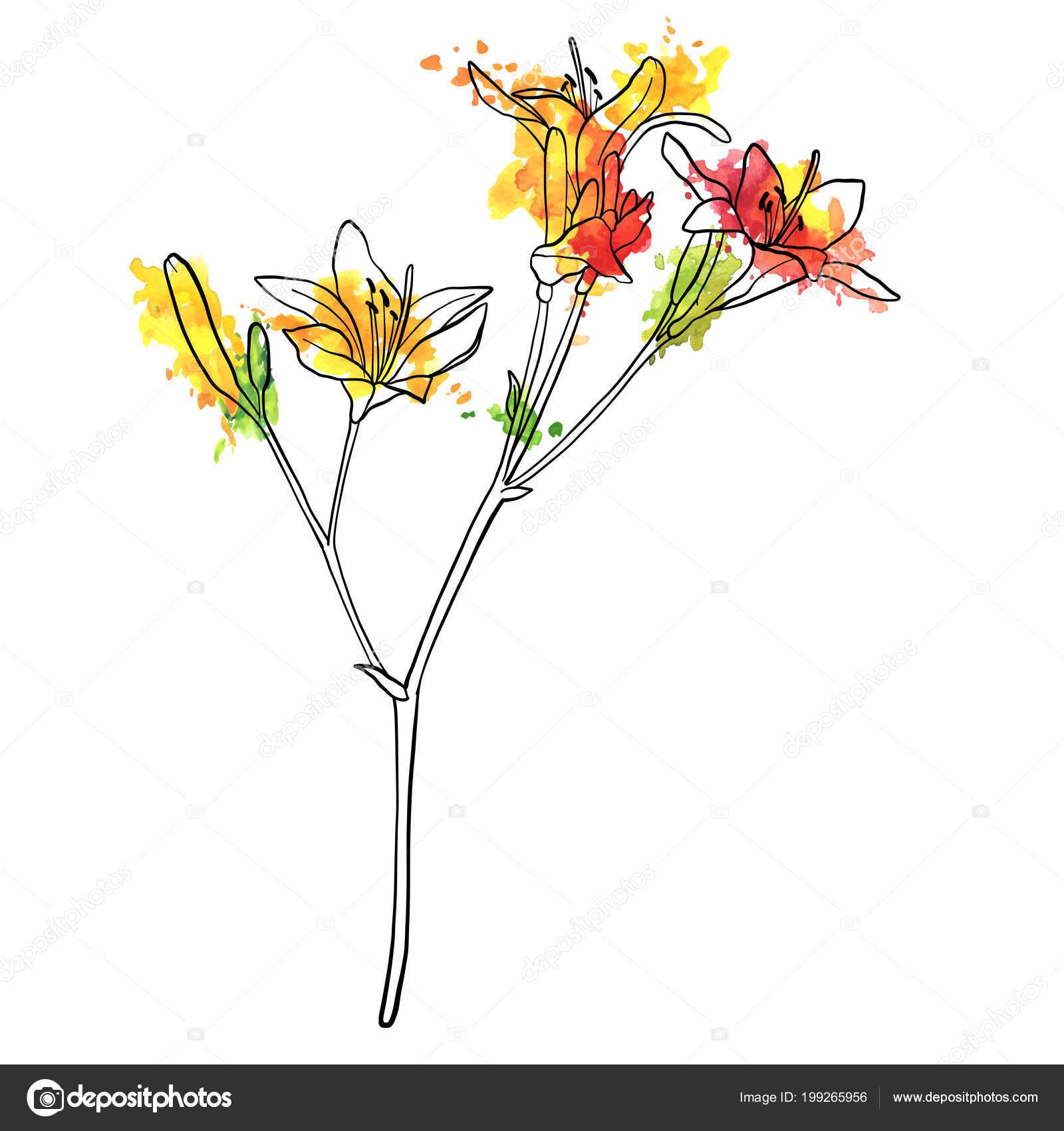 Fleur De Lys Dessin Vectoriel Image Vectorielle Cat Arch Angel