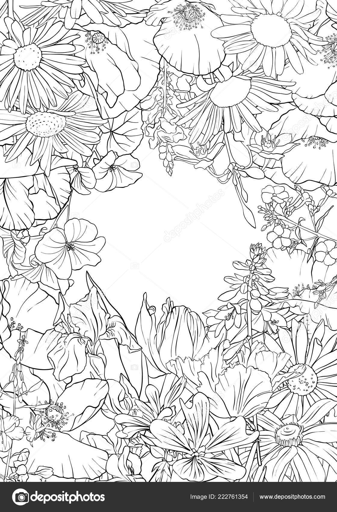 Background Flower Drawing Vector Drawing Background With