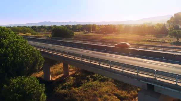 Aerial Shot of a Bridge with Traffic on it. Footage is Made in the Rural Area with Pine Trees Growing Big. Sun is High and Warm.