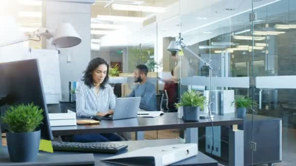 Time-Lapse of the Busy International Office where Diverse Team of Young Businesswomen and Businessmen Work on Laptops, Have Meetings, Discussions and Draw Plans on a Whiteboard.