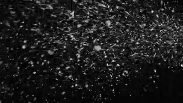 Bouřlivé počasí, sněžení, velké sněhové vločky s poryvy větru, izolované na černém pozadí. Skutečné odlesk objektivu, který je snadno ovladatelný směsi / Overlay režimy.