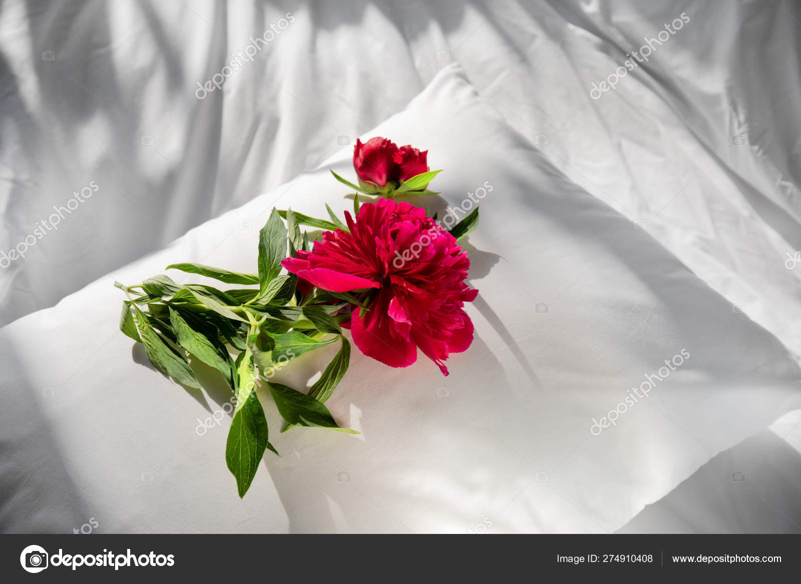 Flowers Staying On Open Book In Bed Romantic Good Morning Top View Stock Photo C Sharzemnoj 274910408