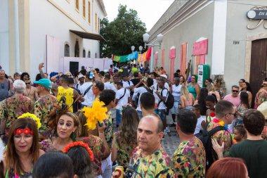 Carnival in Recife, Pernambuco, Brazil, 2018.
