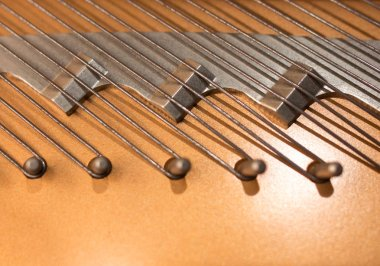 Closeup grand piano hitch pins.