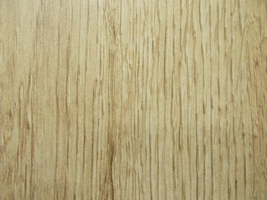 Wood texture. Background for your design.