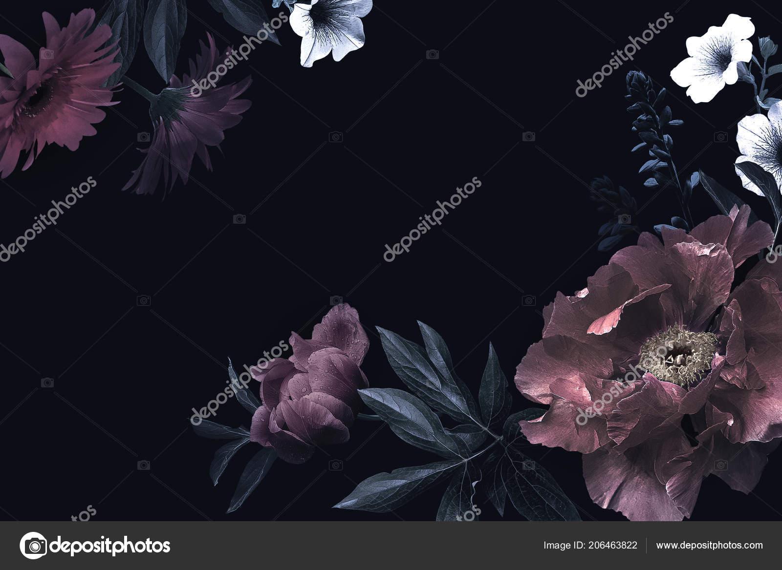 Pivoines Tulipes Lys Hortensia Sur Fond Noir Modele Pour La Conception Des Invitations De Mariage Voeux Carte Visite Emballage Decoration