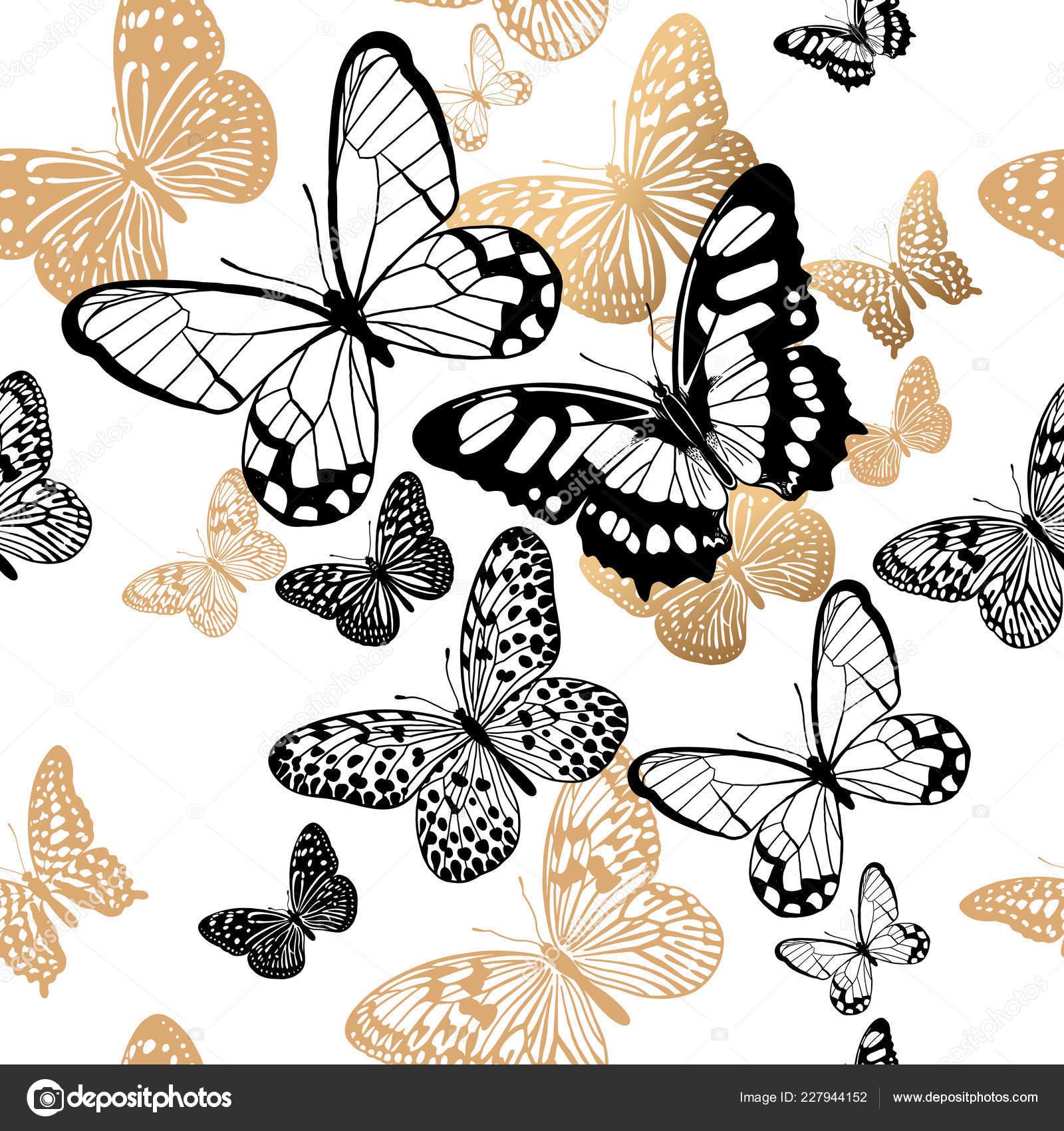 Gold Black Butterflies White Background Seamless Pattern Vector Illustration Template Stock Vector C Sasha Kasha 227944152