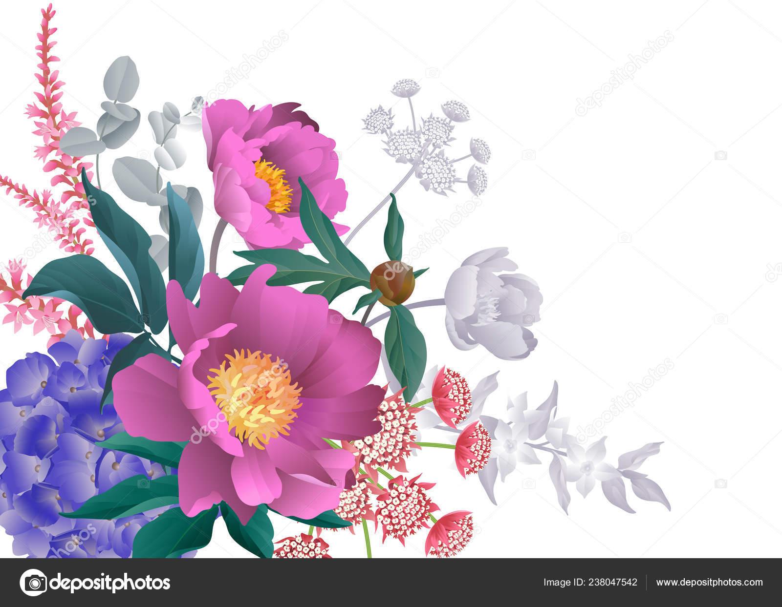 Pivoines De Bouquet Hortensias Branches Deucalyptus Feuilles Herbes Fond Blanc Motif Floral Et Lespace Pour Le Texte Design Carte Visite