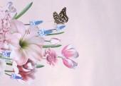 Jarní květiny, tulipány, hyacinty, anemone, petrklíč květ a motýl. Kytice z krásných zahradních květin na růžovou. Květinové dekorace. Vinobraní na pozadí. Barokní styl.