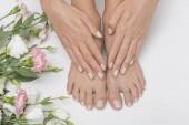 Fotografie Das Bild der idealen Maniküre und Pediküre. Frauenhände und -beine im Wellnessbereich.
