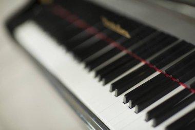 Piano and piano keyboard.