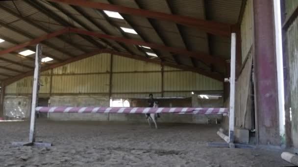 Junge Reiterin auf Pferd springt über Hindernis