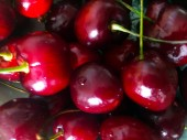 A lemezen sok lédús érett cseresznye található. Háttere és szerkezete.