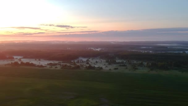 Aerial view: summer fog on the edges of the forest near the field in the morning rays of dawn