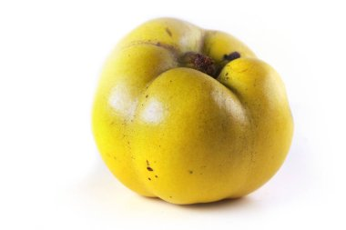 Close-up shot of ripe yuzu fruit on white stock vector