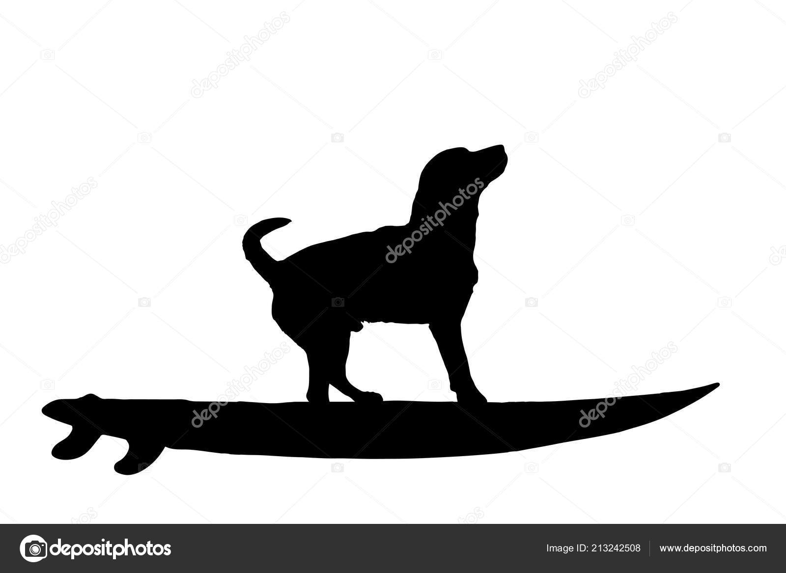Vector Silhouette Dog Surf Board White Background Stock