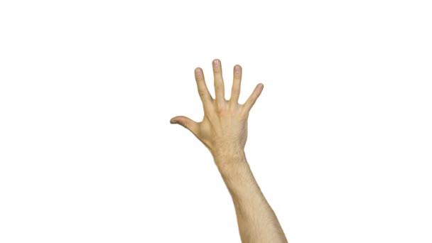 Mužské ruce s prsty na bílém pozadí
