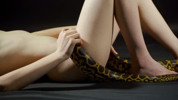 Video žluté anakondy plazící se po prolhaných ženských bocích