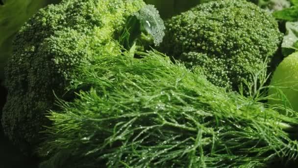 Videó zöld nedves vegyes növényi készlet