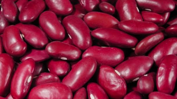 Farbige Bohnen Hülsenfrüchte aus nächster Nähe. Makro. 4K-Video. Biologische Hülsenfrüchte.