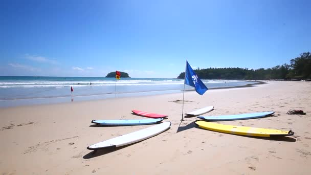 Collection of colorful surf boards on the beach