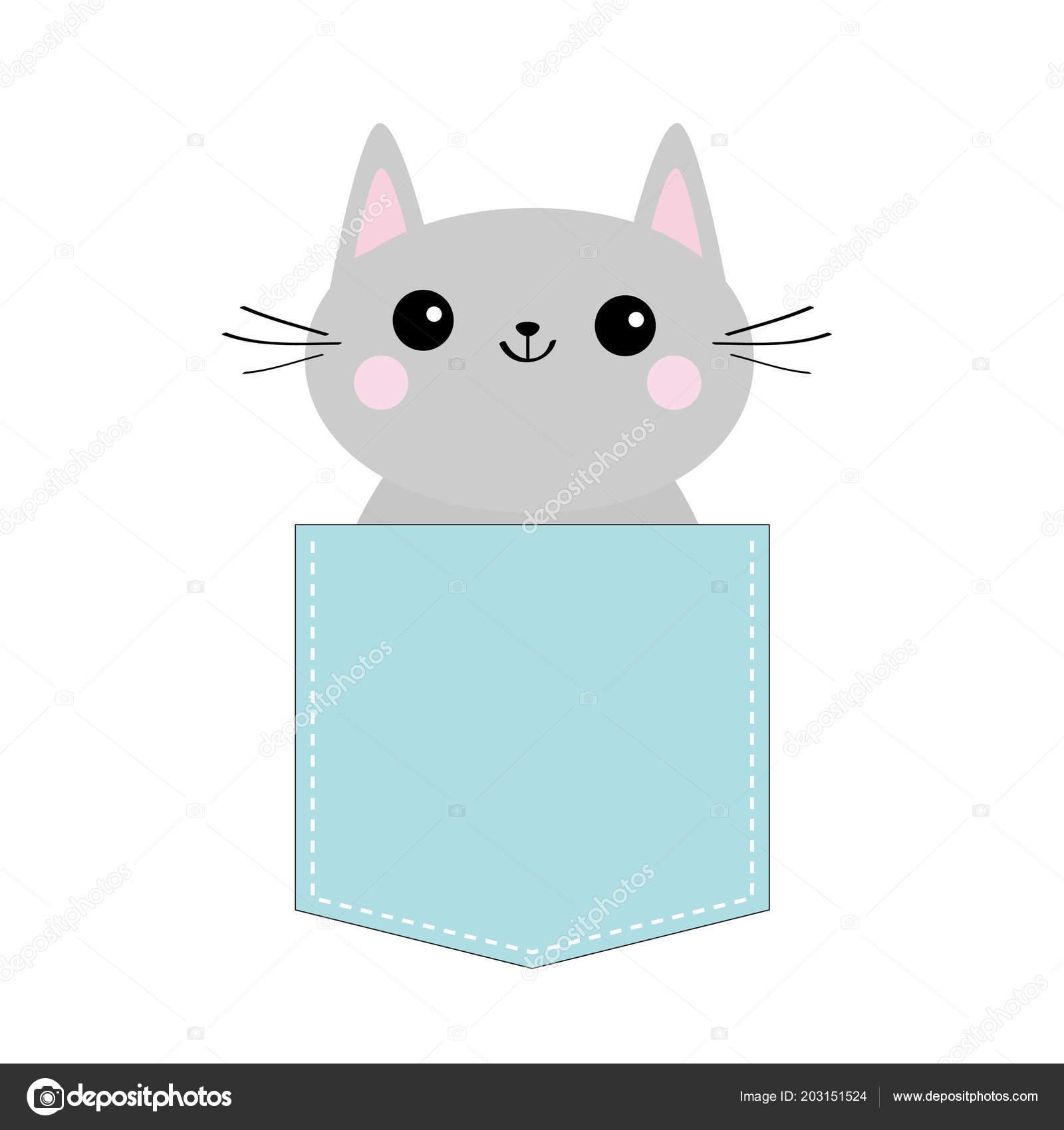 Roztomilé kočička obrázky