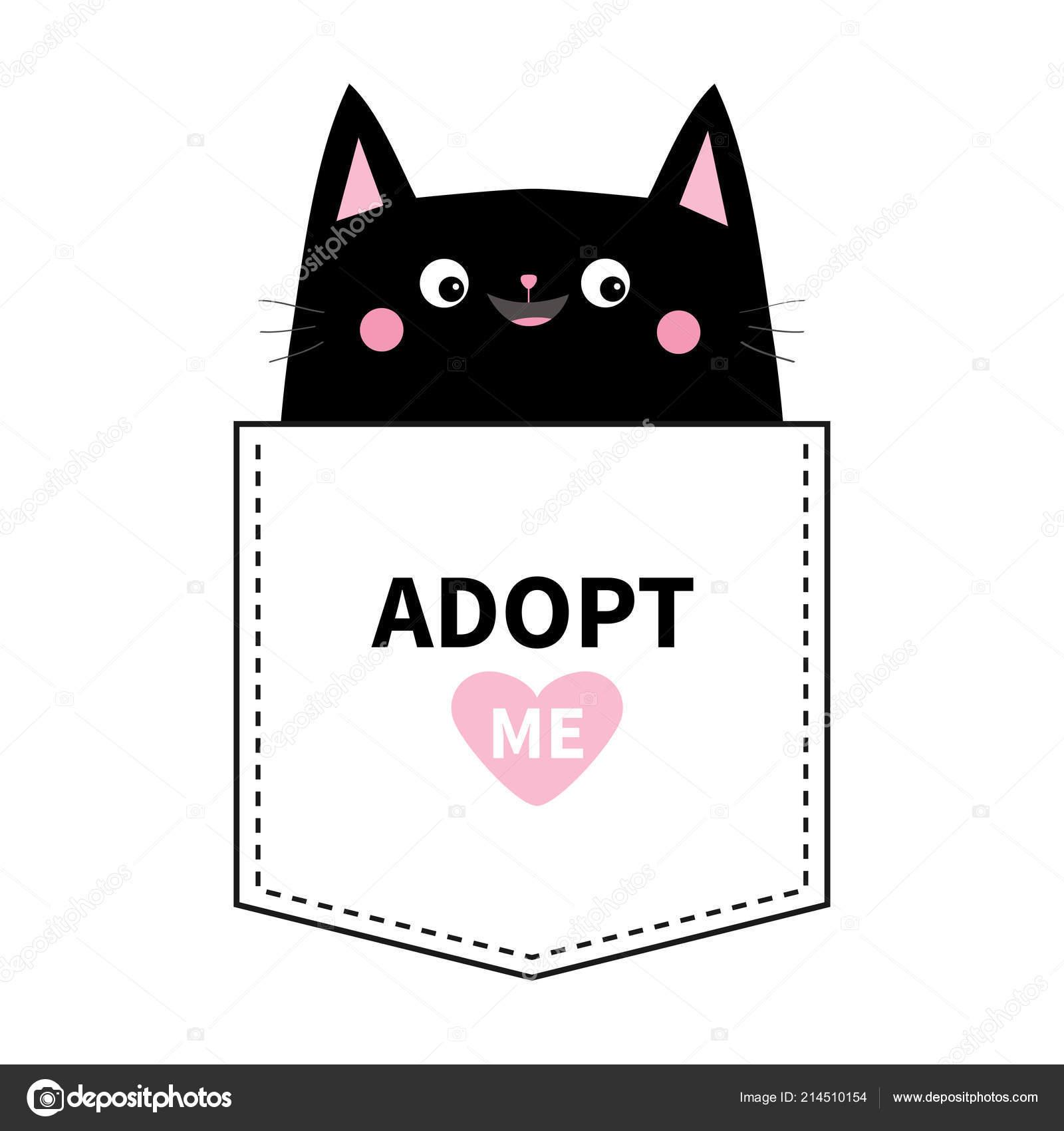 Černá kapesní kočička