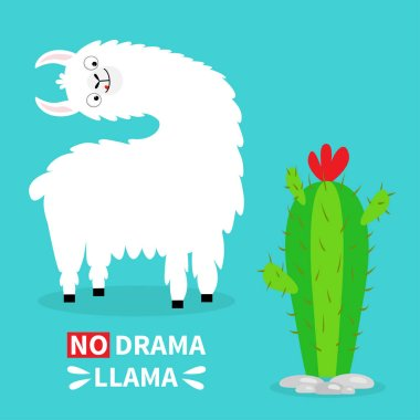 Llama alpaca turning head face, tongue. No drama. Cute cartoon funny kawaii character. Cactus. Childish baby collection. T-shirt, greeting card poster template print Flat design Blue background Vector