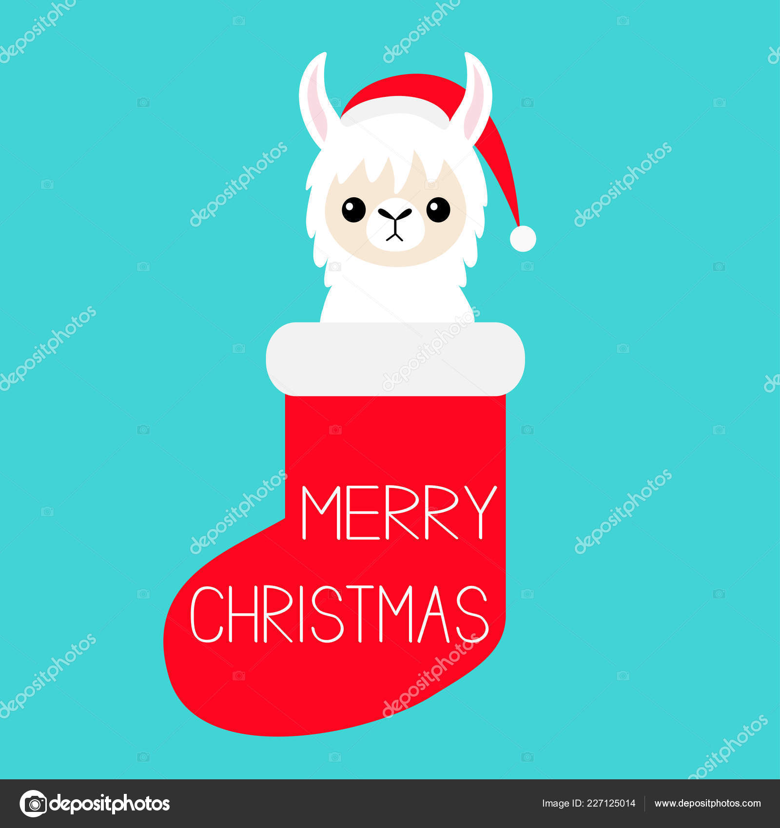 Joyeux Noël Lama Alpaga Bébé Visage Dans Une Chaussette