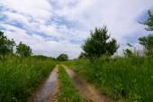 Polní cesta krajinou