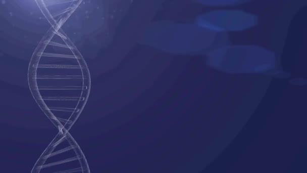 vettore DNA linea blu Sfondo blu