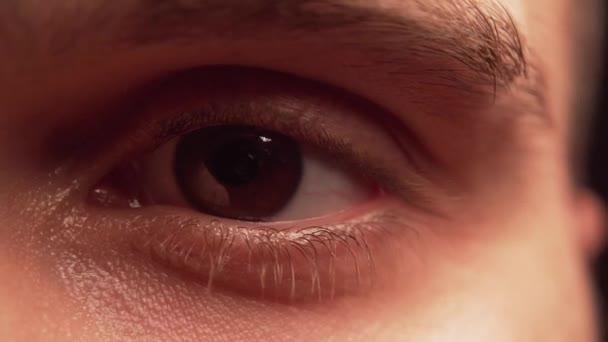 Oční bulvy
