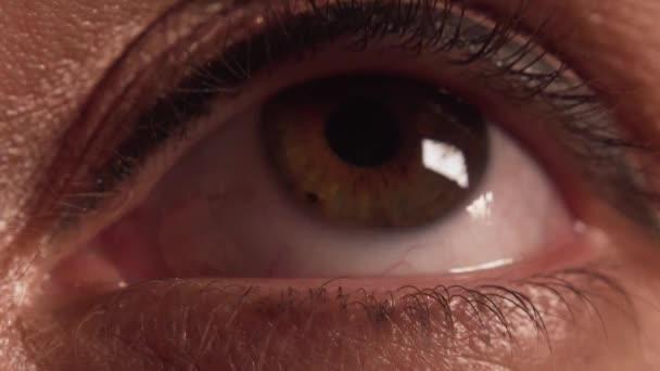 Vomans oko makeup extrémní closeup 2