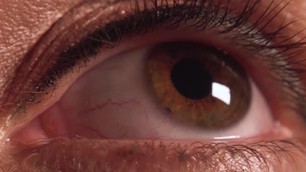 Vomans oko makeup extrémní closeup 3