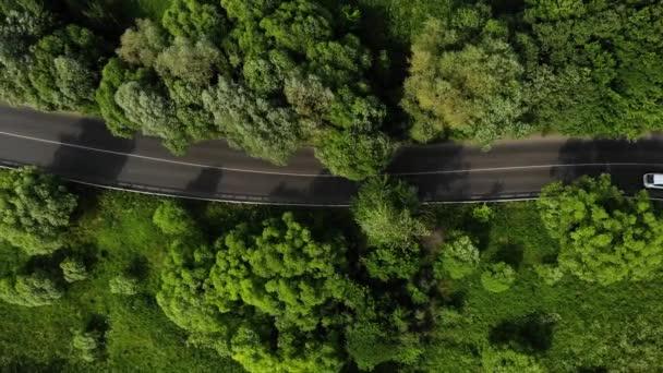 Légi felvételek az út a zöld erdőben több autó meghajtó az autópályán. Autók lovaglás az aszfaltúton a zöld mezőben.
