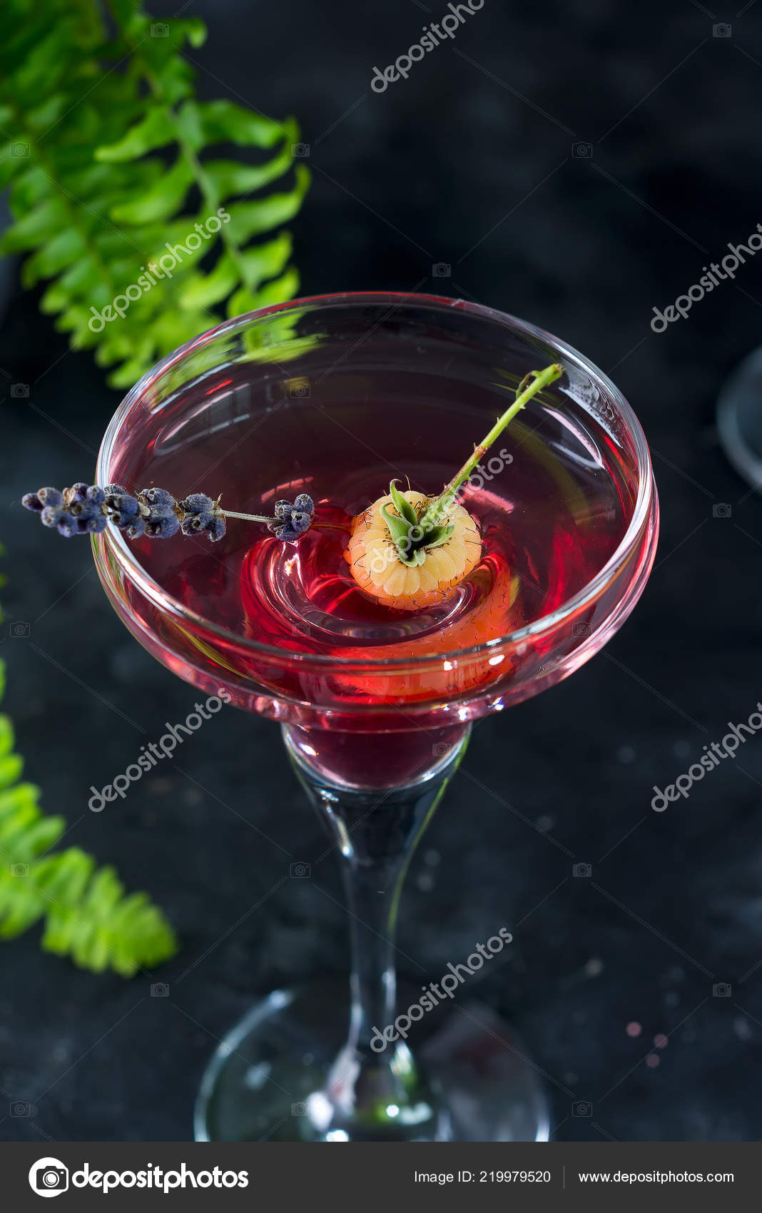 Delicious Negroni Cocktails Campari Gin Vermouth Berries