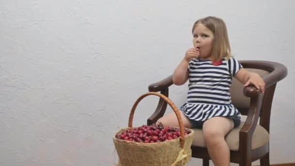 Aranyos kislány ül a széken a fehér fal hátterében. A csinos lány kivesz egy bogyót a kosárból és megeszi. A kissrác szereti a piros cseresznyét otthon. Aranyos kislány ül a széken egy kosár cseresznyével..