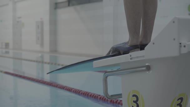 Sportliche Profi-Schwimmer springen mit Schwimmflossen aus dem Startblock im Hallenbad ins Becken. Nahaufnahme