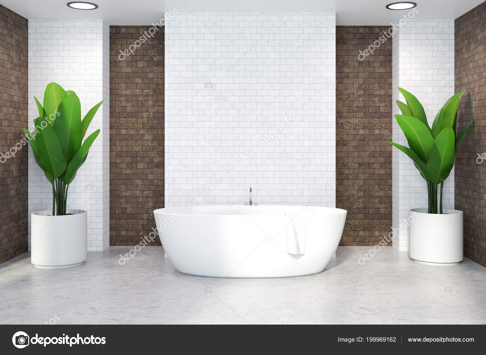 Sala Da Bagno Pianta : Interiore stanza bagno mattoni bianchi con pavimento bianco una