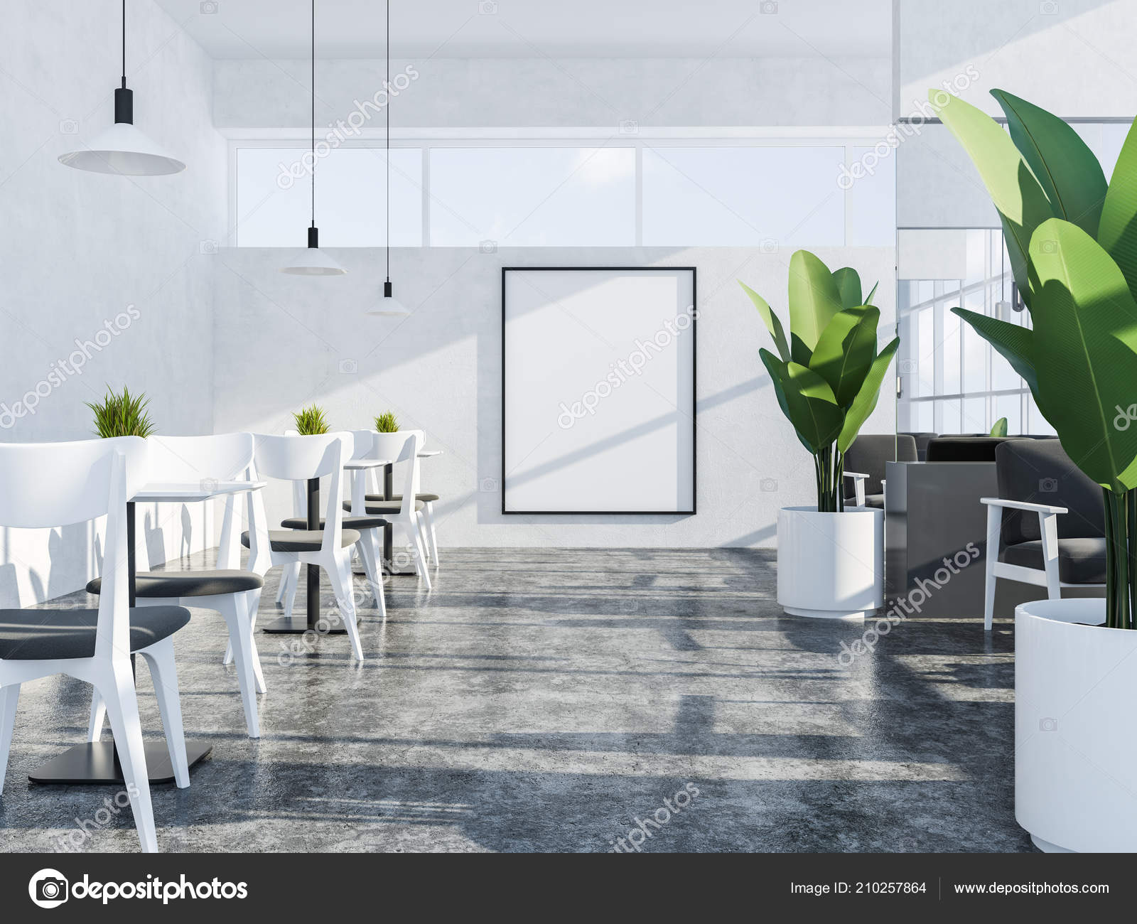 White Wall Coffee Shop Interior Concrete Floor Large Windows White