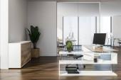 Moderní manažer kanceláře interiéru s dřevěnou podlahou, bílé stěny, stůl stylový počítač a květináči. 3D vykreslování vysmívat se