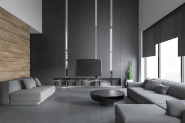 Living room interior with sofas and TV