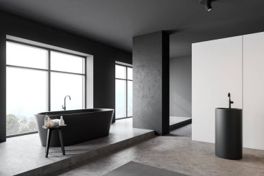 White and gray bathroom corner with tub